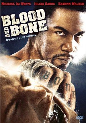 Kan ve Kemik – Blood and Bone 2009 Türkçe Dublaj izle