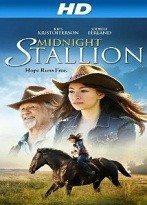 Gece Yarısı Aygırı – Midnight Stallion 2013 Türkçe Dublaj izle