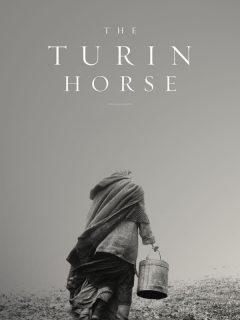 Torino Atı 1080p izle